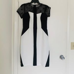 Black and white fitted dress with mesh neckline